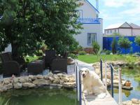Усадьба в Благовещенской курорт Анапа