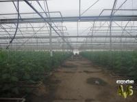 Анапа земли сельхозназначения